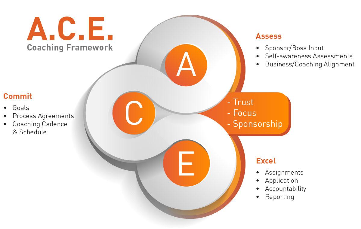 Executive Coaching Framework